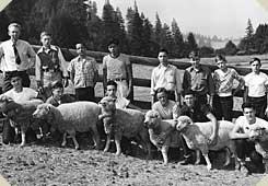 a line of boys and their teacher display the sheep they cared for, mid-1900s